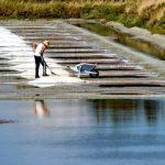 paludier rammmassant le sel de Guérande